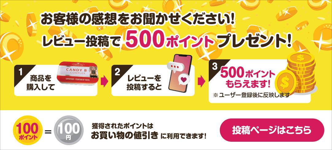 レビュー投稿で500ポイントプレゼント!